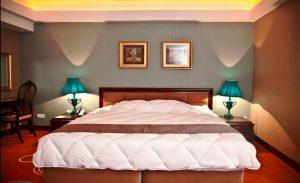 Top 5 hotels in Shiraz - Shiraz Hotel