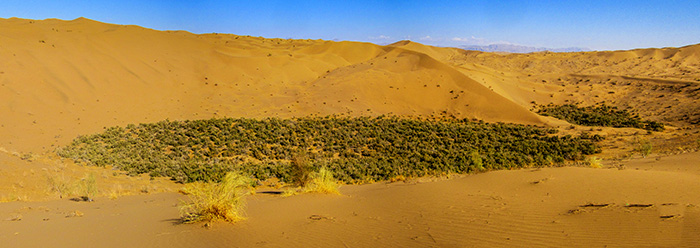 rig jen - Iran deserts